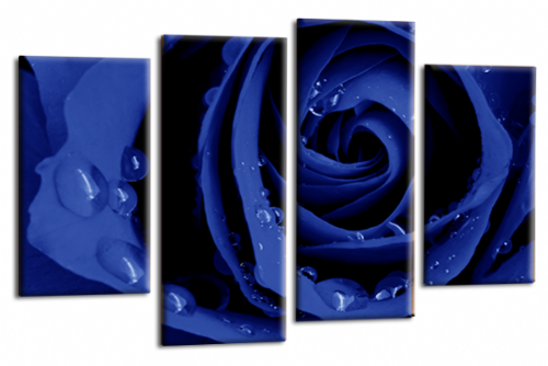 Flower Rose Wall Art Floral Picture Print Grey Blue White